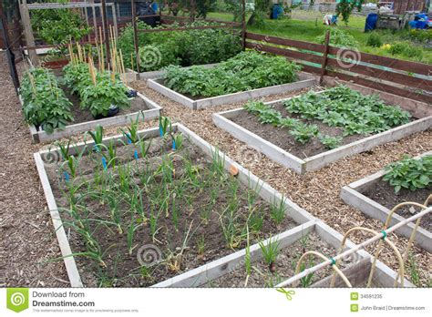 Vegetable Garden Royalty Free Stock Photo Image 34591235 Allotment Vegetable Gardening