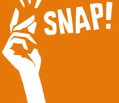 The Gingersnap by Snap Profits Review The Method That Works For Me