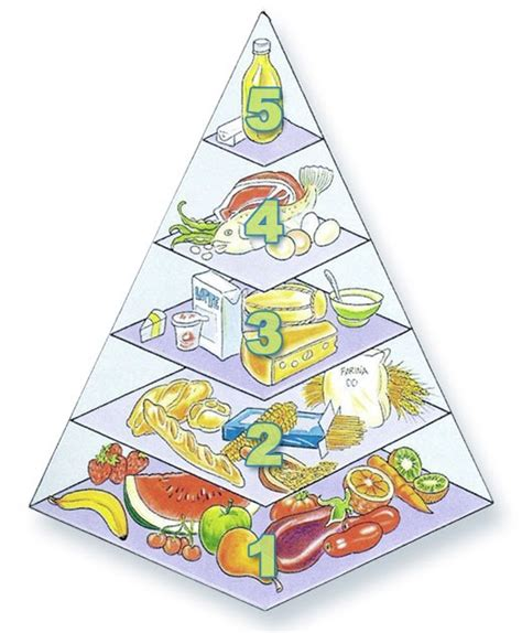 alimentazione di uno sportivo legalit 224 in rete quot la giusta alimentazione per uno sportivo quot
