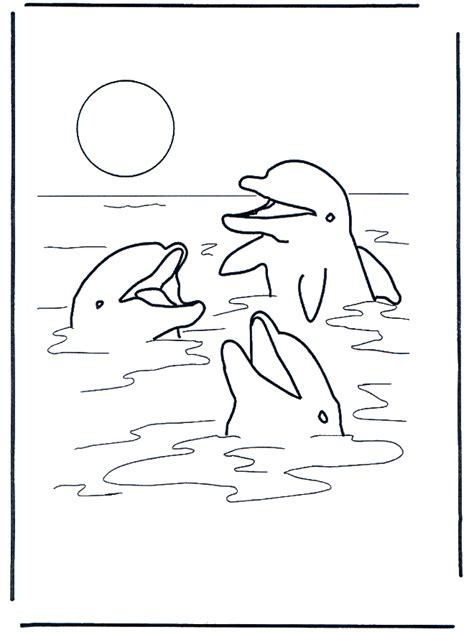 Three Dolphins Water Animals Water Animals Coloring Pages