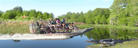 fan boat tours florida airboat rides florida alligator cove tours 863 696 0406