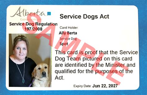 service dogs california get a service identification card alberta ca