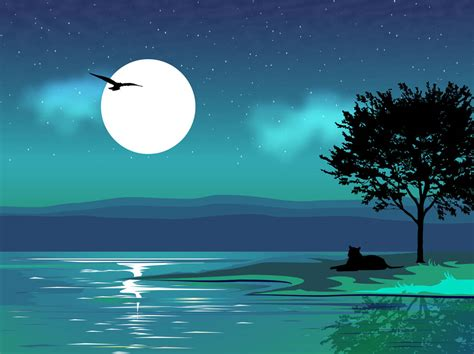 illustrator tutorial night scene illustrator 16 night scenery vector images how to draw night scene