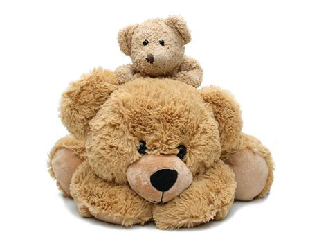 teddy bears teddy pictures hd wallpapers