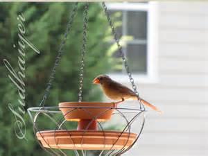 Hanging Bird Feeders Diy Bird Hanging Planter Petdiys