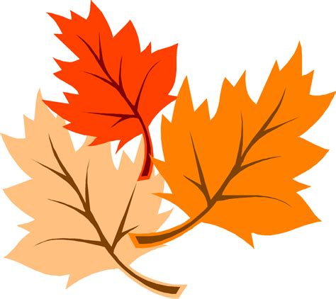 clipart autumn leaves fall leaves graphic clipart best