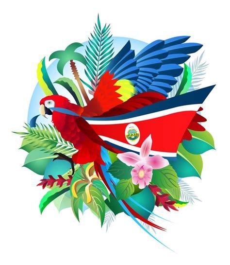 top los simbolos patrios de wallpapers las 25 mejores ideas sobre bandera costa rica en pinterest