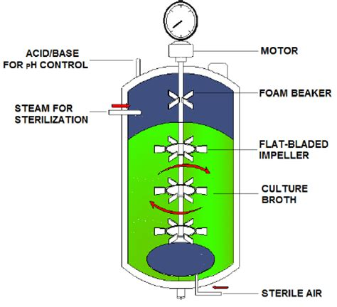 biography generic structure cross section of a typical bioreactor showing the units of