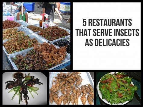 Might Serve Far Less Than 45 Days by 5 Restaurants Around The World That Serve Insects As