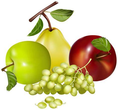 fruit clipart grape clipart mix fruit pencil and in color grape