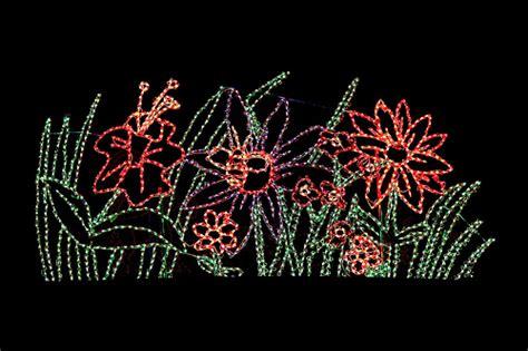 phx zoo lights flowers zoo lights flowers at zoo lights