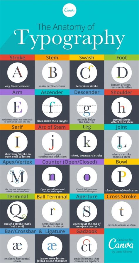 typography vocab a beautifully illustrated glossary of typographic terms the word