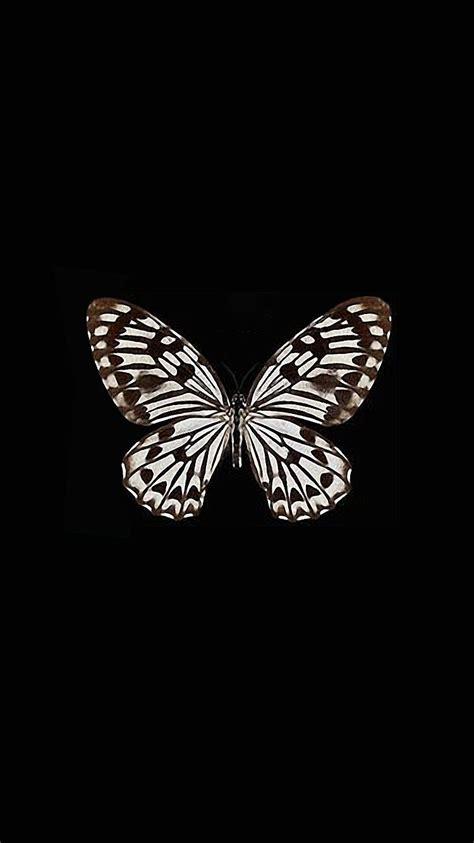 wallpaper iphone 6 butterfly iphone 7 wallpaper art