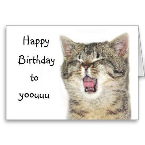 Happy Birthday Cat Card 17 Best Images About Cat Birthday Cards On Pinterest