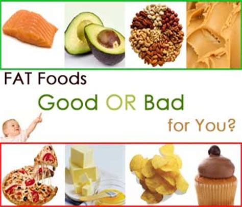 healthy fats for you facts about fats is for you health