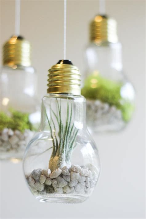Light Bulb Terrarium by Craft Projects Diy Light Bulb Terrariums The Snug