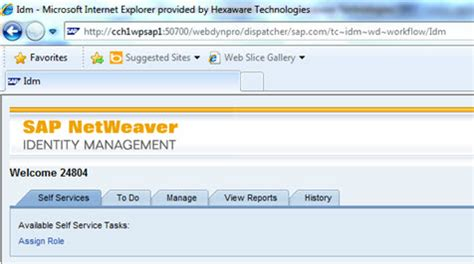 sap netweaver tutorial free download hi friends sap idm self services tab while clicking