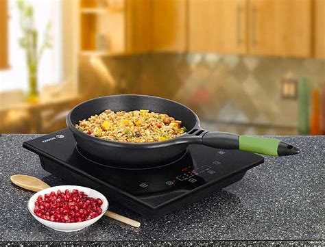 induction cooker recipes fagor portable induction burner