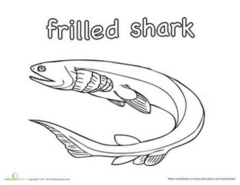 Frilled Shark Coloring Page   121 best images about riley on pinterest dodge pickup