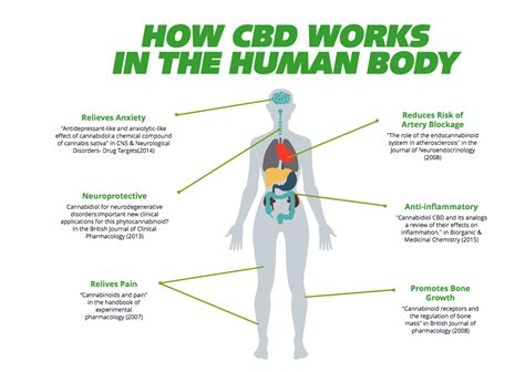 cbd hemp the secret cure of the human books what is hempworx cbd and how does it work