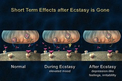 Ecstasy Detox Symptoms by What Are Ecstasy Withdrawal Symptoms Addiction
