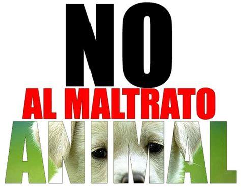 aviso este repaso al maltrato europeo a los refugiados tema 54 maltrato animal alscarloos