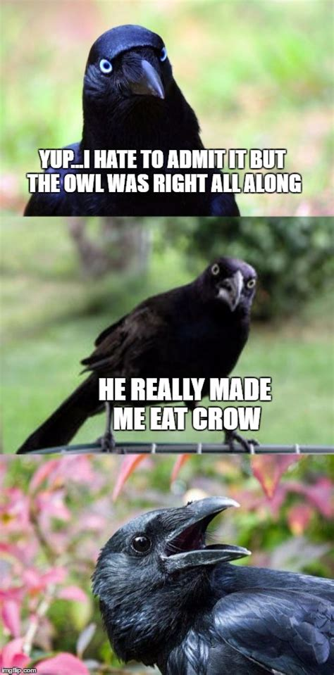 Crow Meme - bad pun crow imgflip