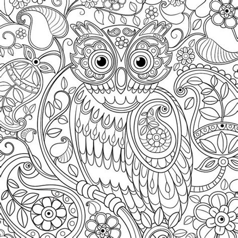 cute pattern colouring pages cute owl paisley pattern adult coloring page by