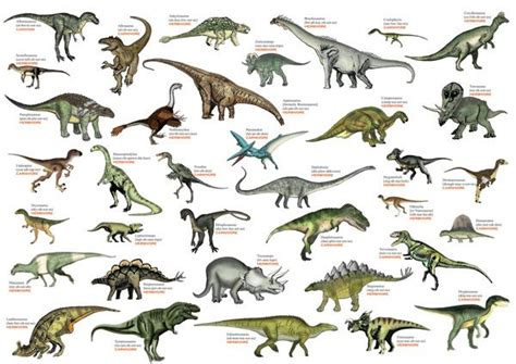 best 25 dinosaurs names list ideas on pinterest
