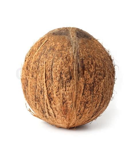 whole coconut on white background stock photo colourbox