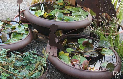 vasi per ninfee sul balcone o sul terrazzo ninfee e acquatiche con un