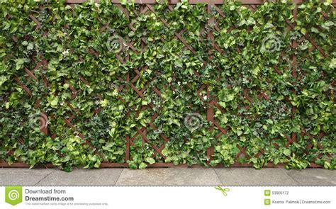style green tudor style green fence stock photo image 53905172