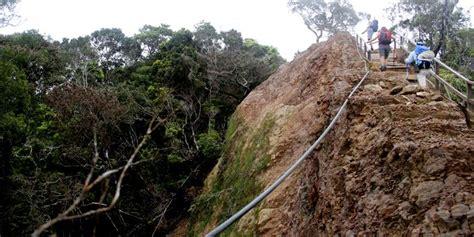 Kompas Gunung by Mengintip Cara Malaysia Mengelola Gunung Kinabalu Kompas