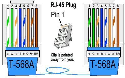 cate wiring schematic diagram wiring
