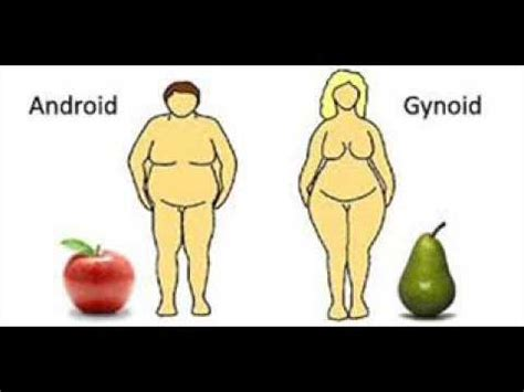 android obesity obesity موٹاپا म ट प android 4 infection icsp94 urdu bbjan