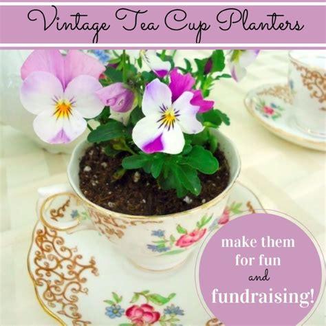 tea cup planter vintage teacup planters a great fundraising tool garden