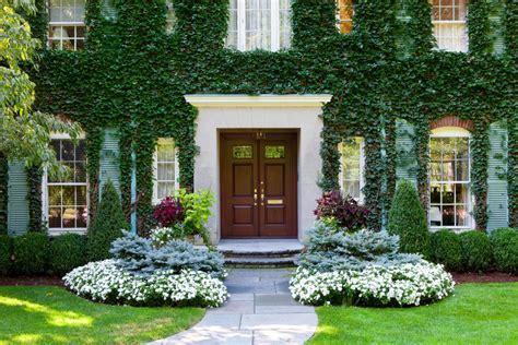diy tips  treat  lawn   summer