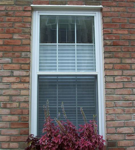 Window Bars Interior by Interior Window Security Bars Advice For Your Home Decoration