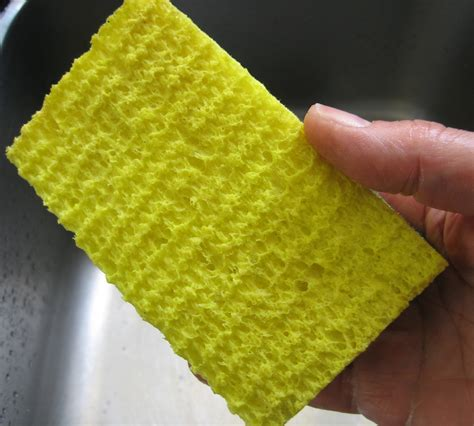 kitchen sponge cure for the stinky kitchen sponge great food it s