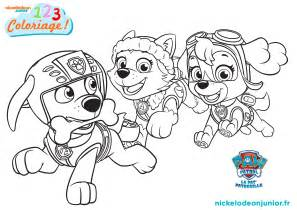 coloriage paw patrol episode 109 nickelodeon junior