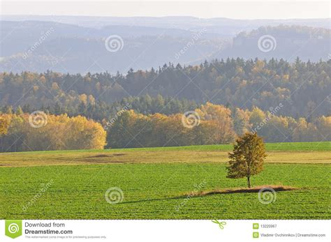lone landscaping fall landscape with lone tree royalty free stock photography image 13220967