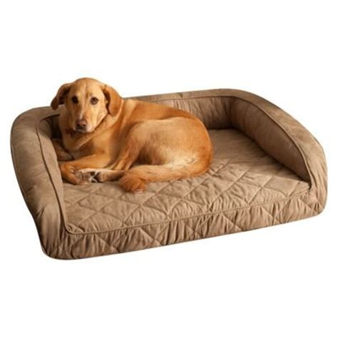 dog bed target buddy beds memory foam bolster dog bed taupe large
