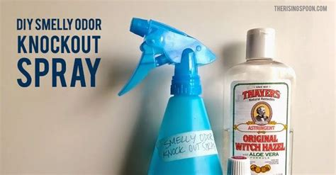homemade bathroom deodorizer spray diy smelly odor knockout spray with essential oils
