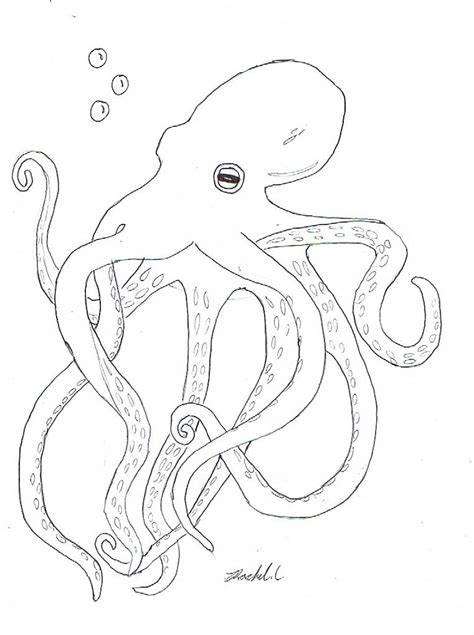 Coloring Page Octopus by Free Printable Octopus Coloring Pages For