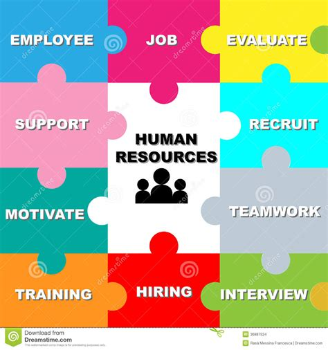 design resources human resources stock vector image of evaluation