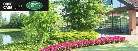 vasi viridea idee verdi per la primavera si trova tutto da viridea