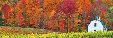 canada colors scenic fall foliage tours in ontario and eastern canada