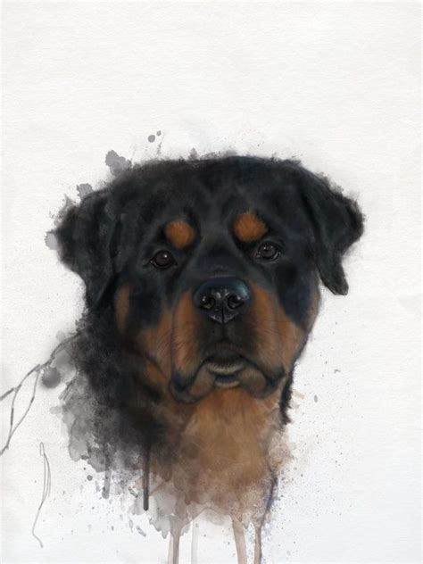 light brown rottweiler sweet black and brown rottweiler puppy in smudges design tattooimages biz