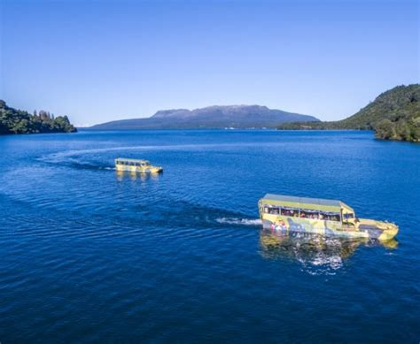 duck boat rotorua things to do in rotorua thermal attractions must do