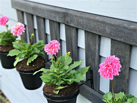 Easy Planter Ideas by Upcycled Ladder Planter